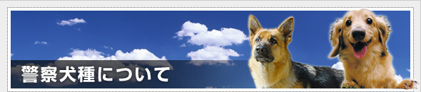 警察犬種について