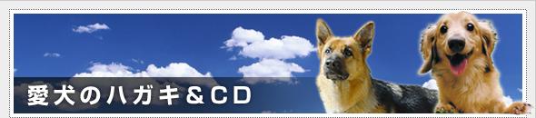 愛犬のハガキ&CD
