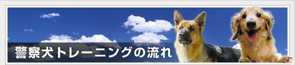 警察犬トレーニングの流れ
